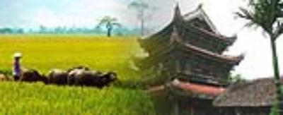Tư vấn du lịch Thái Bình
