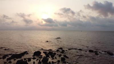 Bãi biển 295