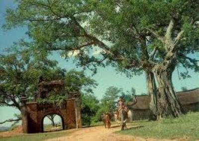 Chùa Yên Nội