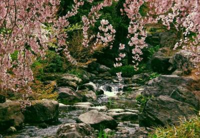 Khu du lịch sinh thái bầu nước sôi - Thác mai