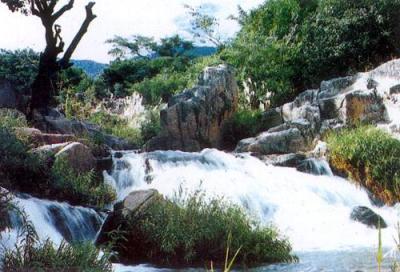 Vườn quốc gia Núi Chúa